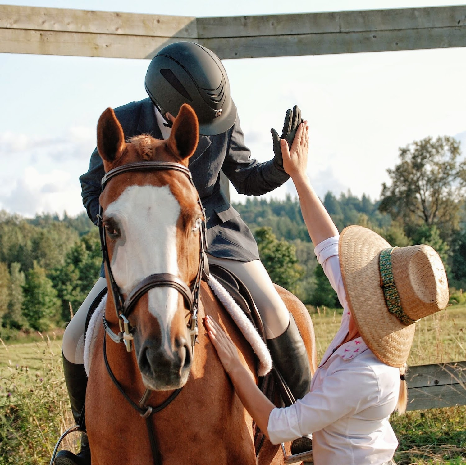 Woman high fives a rider on her horse