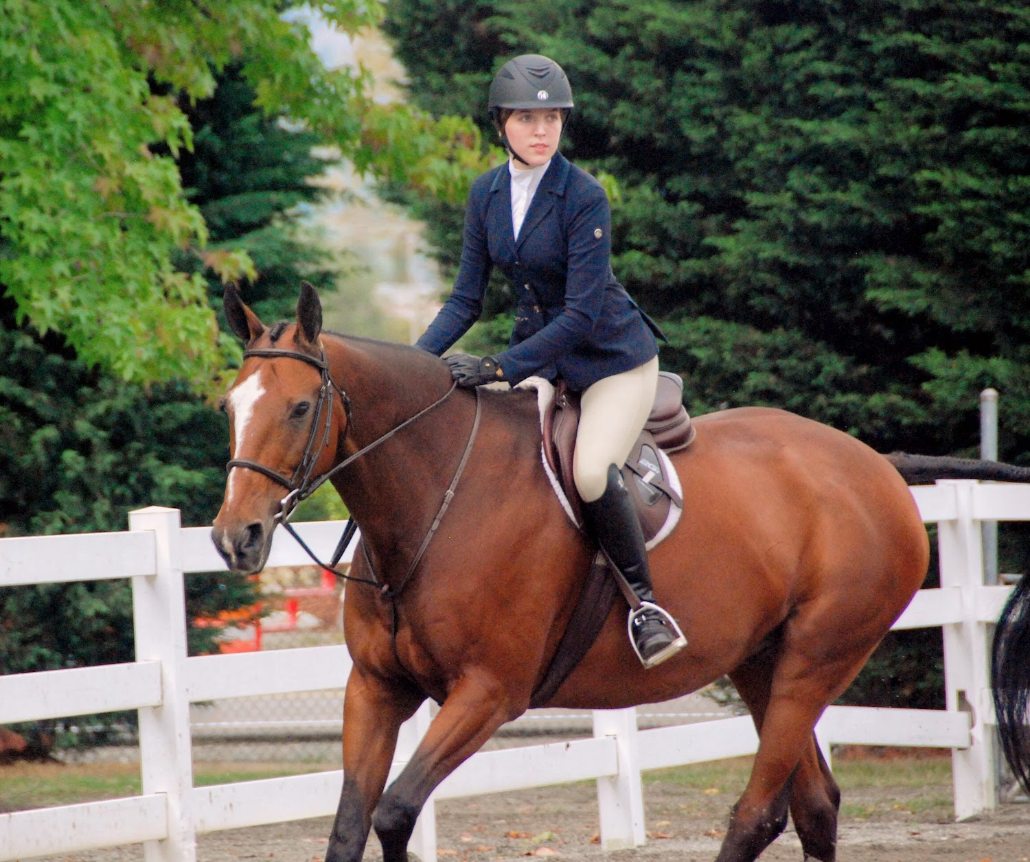Magnolia Ridge rider showing on her horse