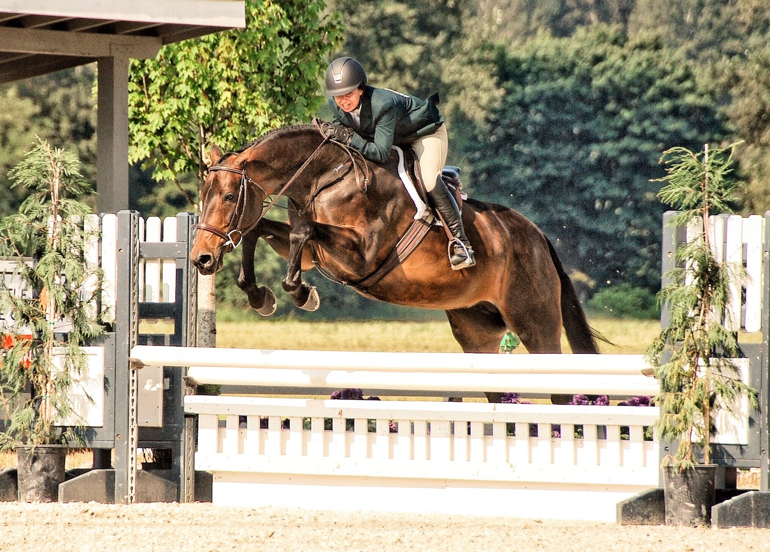 Magnolia Ridge rider jumps an oxer