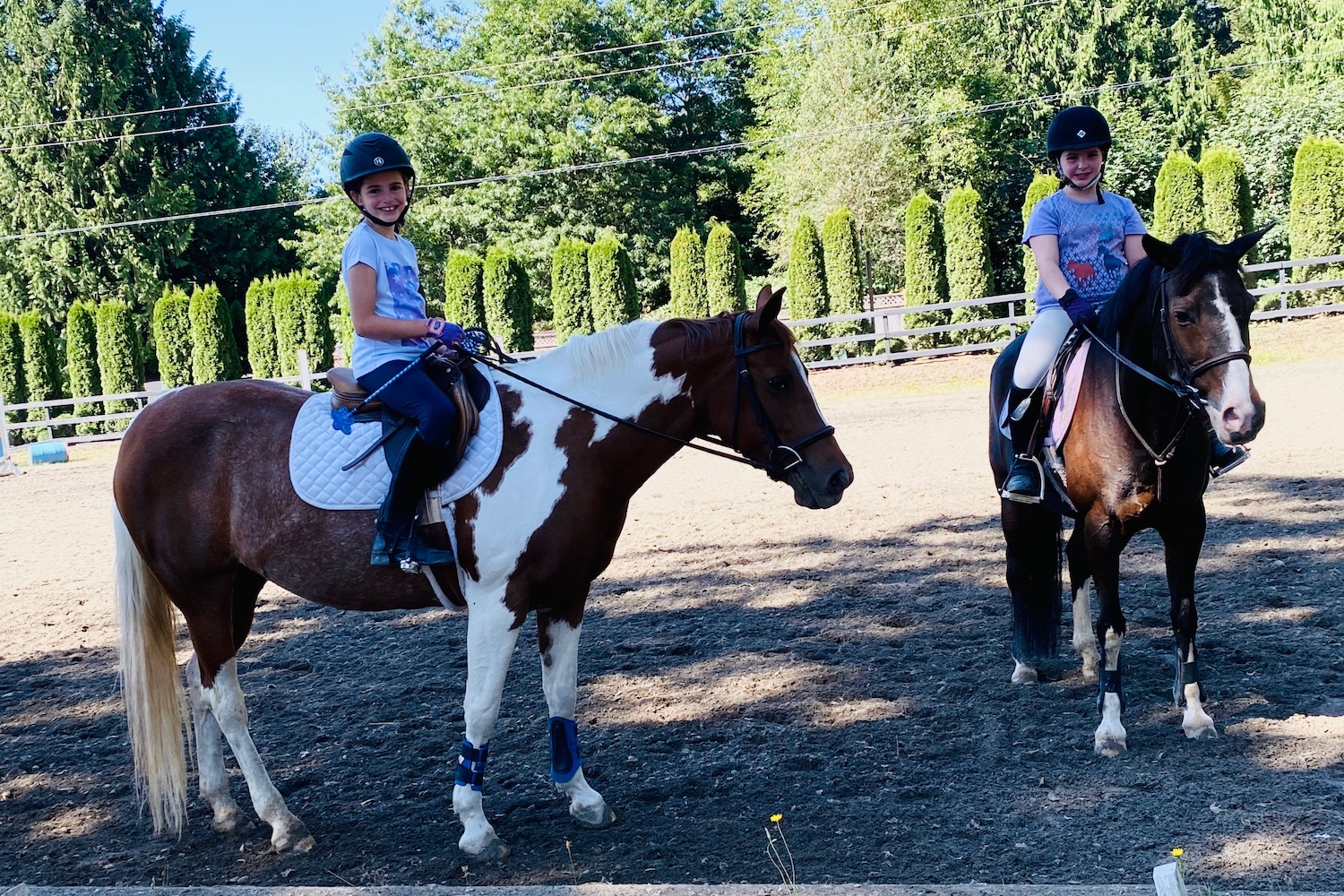 Young riders on ponies